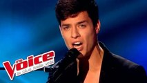 Claude François – Alexandrie Alexandra | Stefan Gillis | The Voice France 2015 | Blind Audition