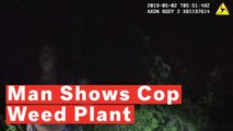 Florida Man Shows Off His Marijuana Plant To Police, Offers Them A Smoke, Gets Arrested