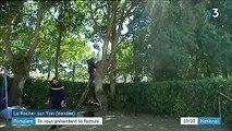 Vendée : les pompiers factureront désormais certaines interventions