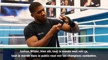 """Poids lourds - Klitschko : """"Joshua, Wilder ou Fury ? Les fans veulent savoir qui est le meilleur"""""""