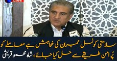 Security Council members wish to resolve the Kashmir issue peacefully: Shah Mehmood Qureshi