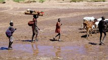 Dilemma of Ugandan pastoralists: Climate change vs. govt policy