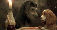 Lady and the Tramp _ Official Trailer _ Disney+