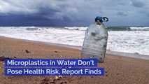 The WHO Says Microplastics Aren't Hurting Us...Yet