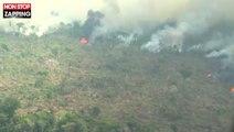 Amazonie : des images aériennes de la forêt en feu dévoilées (vidéo)