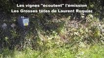 """Balade en trottinette électrique tout-terrain : quand les vignes """"écoutent"""" Les Grosses têtes de Laurent Ruquier..."""