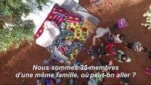 En Syrie, les oliveraies comme refuge pour les déplacés d'Idleb