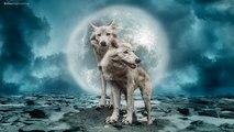 Native American Music - 4K ! - Spiritual Shaman Music