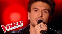 Pink Floyd – Wish You Were Here   William   The Voice France 2015   Blind Audition