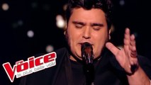 Screamin' Jay Hawkins – I Put a Spell On You   Yoann Launay   The Voice France 2015   Épreuve ultime