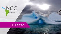 El deshielo glaciar desaliniza las aguas en la Antártida