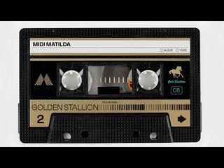 Midi Moments: Golden Stallion