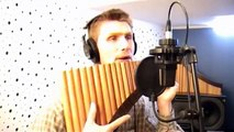 You raise me up - Panflöte - David Döring  Pan flute  Flauta de Pan  Panpipe