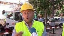 Campaña de vigilancia de los árboles que superan los veinte metros en Murcia para evitar accidentes