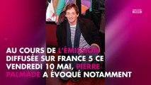 Pierre Palmade accusé d'homophobie : Il revient sur la polémique