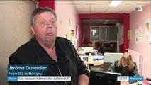 Aisne : les oiseaux victimes des éoliennes ?
