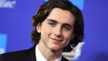Here's what you need to know about Timothée Chalamet, your brand new awards show crush