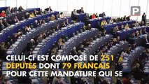 Élections européennes : pour quoi vote t-on ?