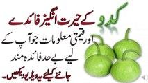 Health Benefits of Gourd    kaddu lauki ke fawaid    لوکی کے زبردست فوائد