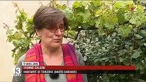 Insecte : les moustiques tigres progressent sur tout le territoire français