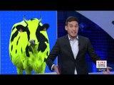 La 4T transformó las vaquitas marinas en amarillas   Noticias con Ciro Gómez Leyva