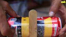 Easy bird trap technology make from CocaCola and Popsicle stick