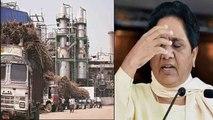 Mayawati की बढ़ी मुश्किलें, Sugar Mill Scam में ED करेगी मनी लॉन्ड्रिग की जांच | वनइंडिया हिंदी