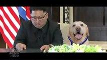 Air Bud's North Korea Sequel