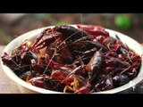 How The Chinese Deal with Foreign Invasive Species | More China