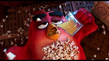 Angry Birds : Copains Comme Cochons - Vidéo exclusive VF