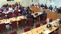 Commission des affaires étrangères : M. William Browder, président-directeur général de Hermitage Capital Management et de M. Vladimir Kara-Murza vice-président de l'ONG Russie ouverte - Mardi 14 mai 2019