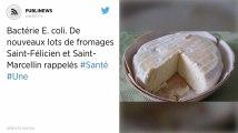 Bactérie E. coli. De nouveaux lots de fromages Saint-Félicien et Saint-Marcellin rappelés