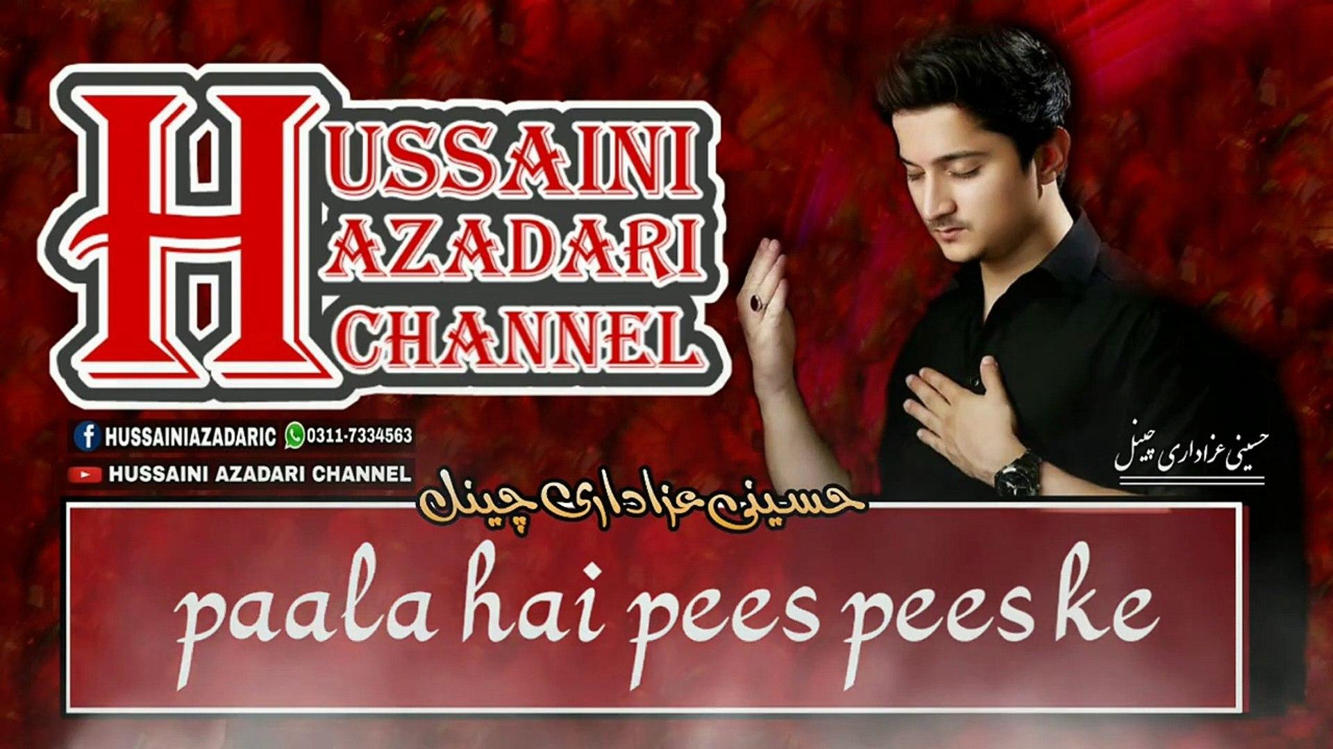 Aey laal ab lehad main kahan chain paongi | Joan Rizvi | Lyrics Noha 2019 | Hussaini Azadari Channel