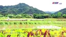 Đại Thời Đại Tập 48 - đại thời đại tập 49 - Phim Đài Loan - THVL1 Lồng Tiếng - Phim Dai Thoi Dai Tap 48