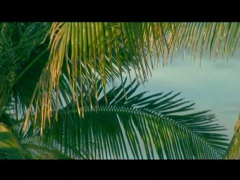 Toquinho - Samba Pra Vinícius