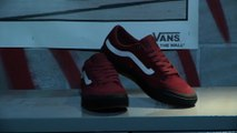 Vans Elijah Berle Pro Wear Test