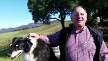 Travel Track On Sirk TV: KUNDE FAMILY WINERY [Sonoma Valley - Kenwood, California] - Part I