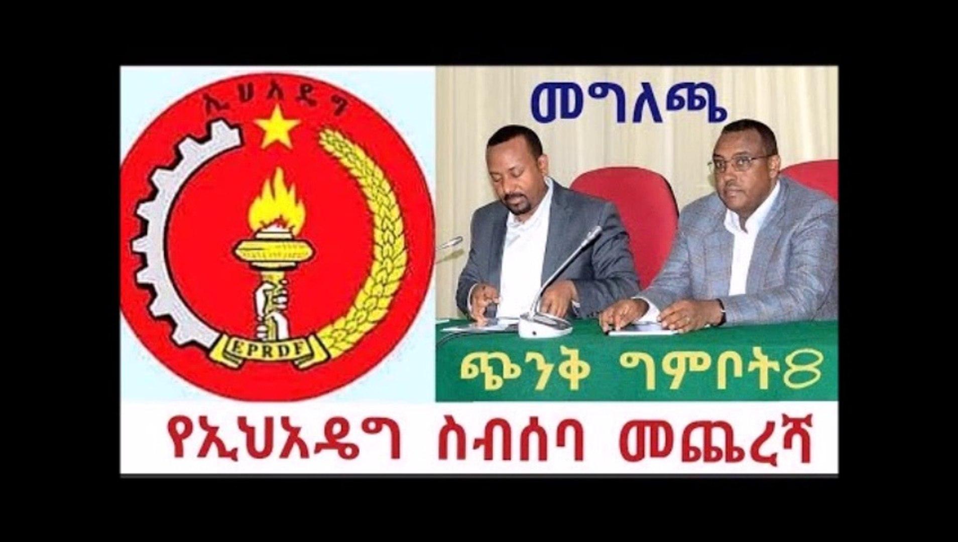 Addis ababa - የኢሀዴግ የጭንቅ ስብሰባ መጨረሻ በመግለጫ ታጅቧል ግምቦት8 የጭንቅ ወር