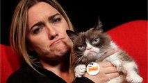 Grumpy Cat Has Dies At 7