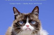 Grumpy Cat has died.