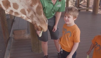 San Antonio Zoo's Will Smith Zoo School Brings Kids Back to Nature