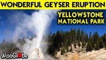Yellowstone National Park Lonestar Geyser Full Eruption