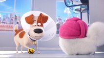 The Emoji Crew reacts to The Secret Life of Pets 2 Busy Bee