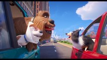 Patton Oswalt, Harrison Ford, Kevin Hart In 'The Secret Life of Pets 2' New Trailer