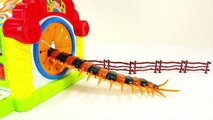 Various All Insect Monster Fumbling Toy Box Step into the Spo Spo Movie for Kids
