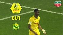 But Kalifa COULIBALY (24ème) / Montpellier Hérault SC - FC Nantes - (1-1) - (MHSC-FCN) / 2018-19