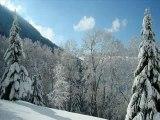Neige Alpes du SUD+Alpes du Nord Janvier 2008