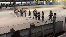 Finale du tournoi de hockey sur glace de Viry-Chatillon des 8 & 9 mai 2019