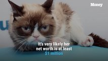 Grumpy Cat, One of the Richest Pets in the World, Passed Away