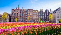 Essential Travel Itinerary: Netherlands